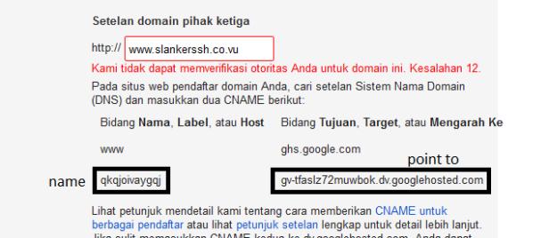 tambahkan domain dan akan mucul dns google